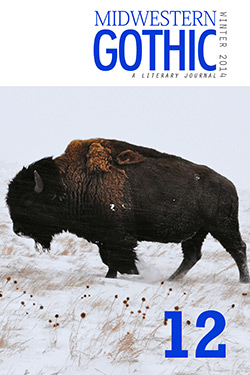 Midwestern Gothic Issue 12 Winter 2014