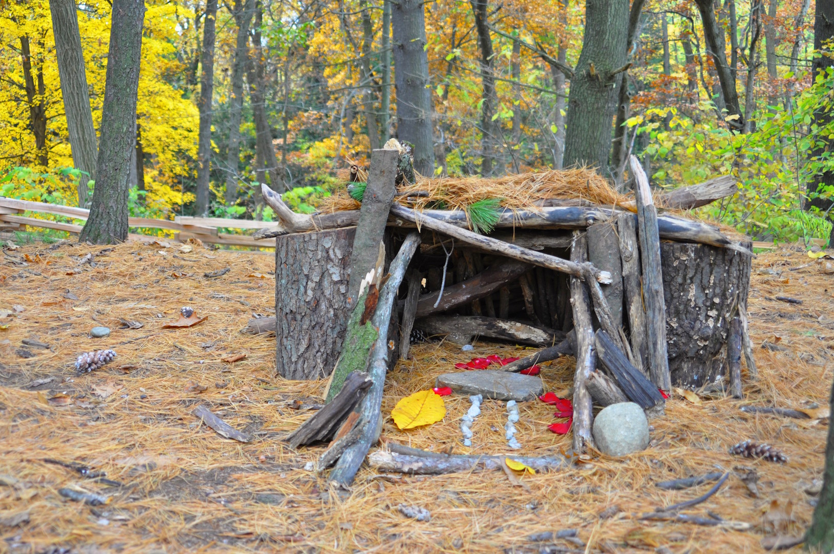 Ann Arbor Fairy House