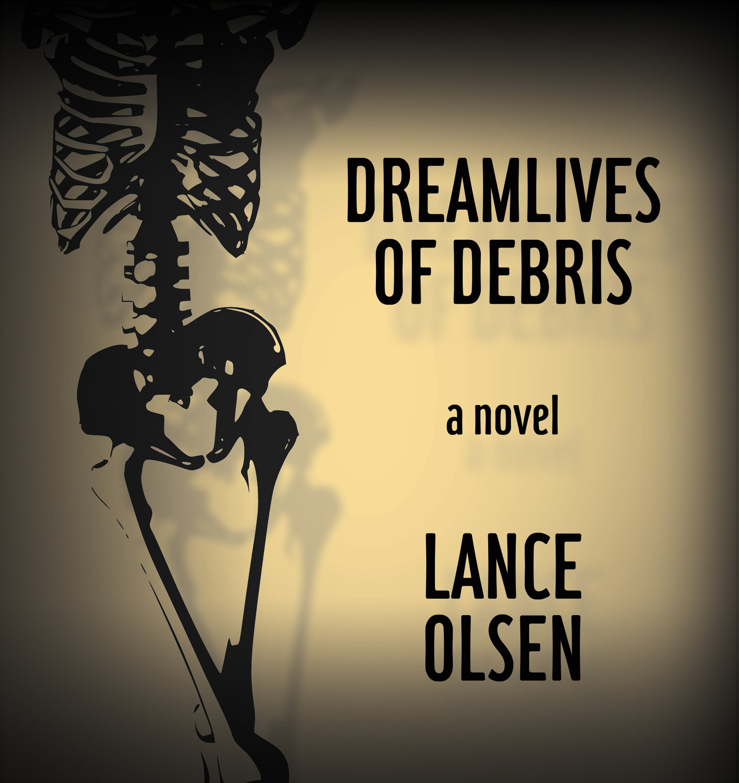 Dreamlives of Debris book