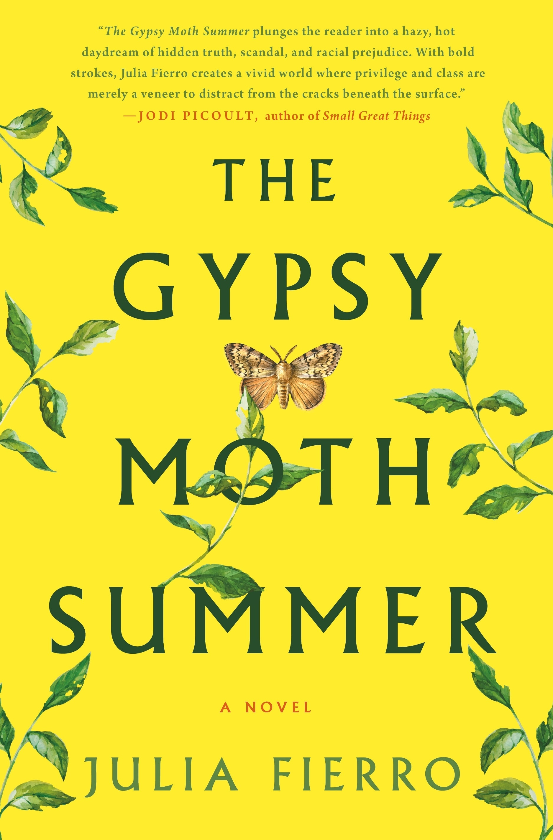 The Gypsy Moth Summer book cover