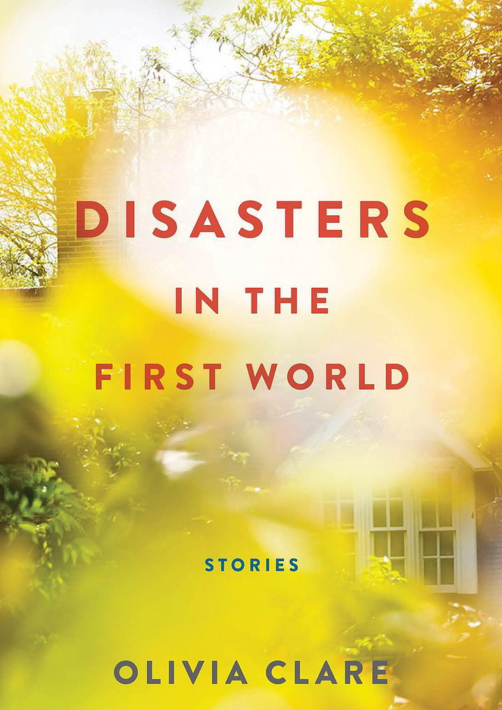 Disasters in the First World book cover