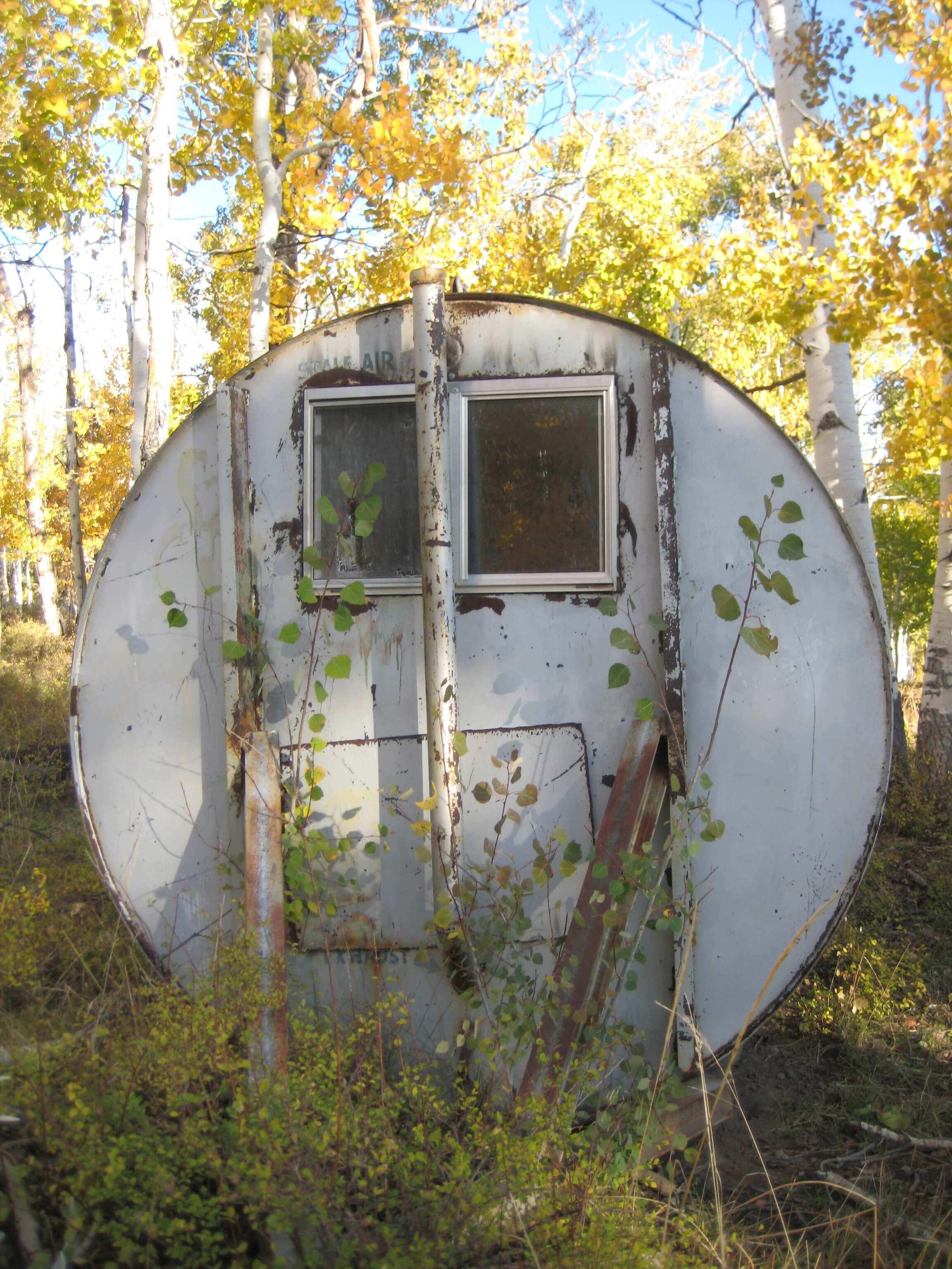 Fallout Shelter by Caroline Gerardo