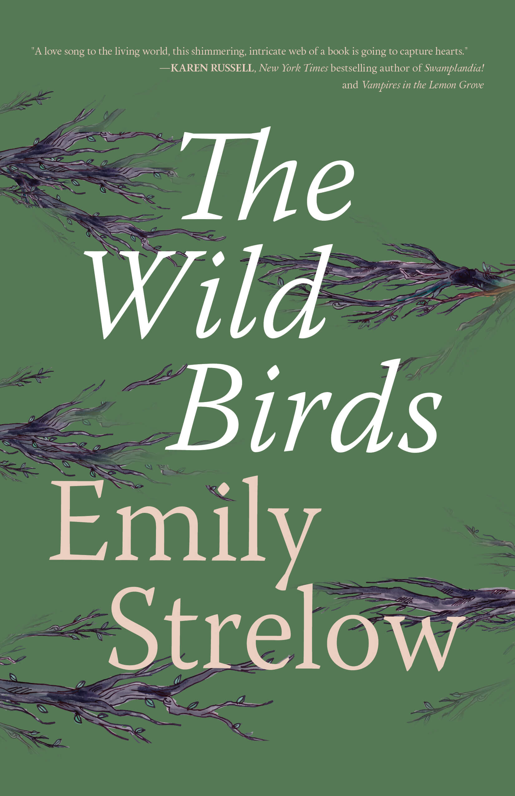 The Wild Birds book cover by Emily Strelow