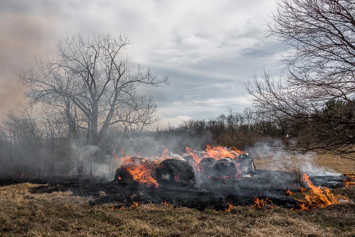 """""""Prairie Fire"""" (c) Greg Boozell"""
